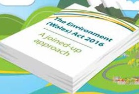 CCC Forward Plan for Environment (Wales) Act 2016 2017–19
