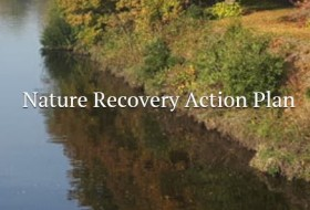 Wales Nature Recovery Action Plan