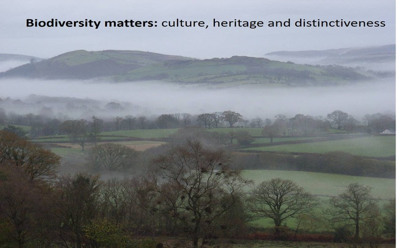 Biodiversity matters: culture, heritage and distinctiveness